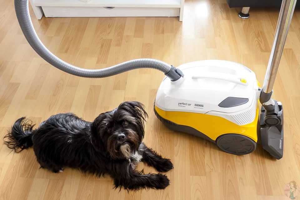 Thomas perfect air animal pur mit Wasserfilter im Test